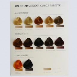 Farb-Palette (Härchen Farbkatalog)